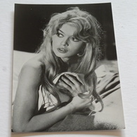 BRIGITTE BARDOT  - Carte Postale Maxi ( A5 : 21 X 15 ) - Photo Privat - Actors