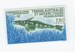 VP8L3 TAAF FSAT Antarctique Neufs°° MNH Poisson Des Glaces Champsocephalus 1991 N°161 - Terre Australi E Antartiche Francesi (TAAF)