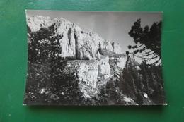 Sommet Du Suchet écrite En 1954 (doubs ) - France