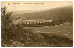 CPA - Carte Postale - Belgique - Herbeumont - La Route De Florenville (M8276) - Herbeumont