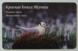 RUSSIA / USSR - Yakutsk - Yakutia - 20u - Pink Pigeon - Rhodostethia Rosea - Chip 23 - VF Used - Russie