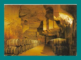 33 Saint Emilion Cave Typique Chateau Tertre Daugay - Saint-Emilion