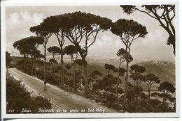 LIBAN LEBANON  Beyrouth De La Route De Beit Mery - Liban