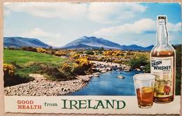 Ireland Irish Whiskey - Irlanda