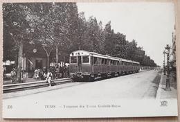 Tunis Trams - Tunisia