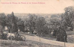 92-PANORAMA DE L ETANG DU PLESSIS ET DE SCEAUX ROBINSON-N°1130-B/0071 - Francia