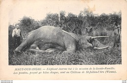Centrafricaine . N° 51180 . Haut-onbanghi . Elephant Tue.chasse - Central African Republic