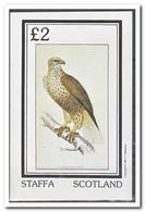 Staffa 1982, Postfris MNH, Birds Of Prey - Regionale Postdiensten