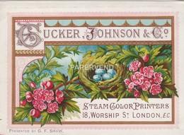 Trade Card Tucker & Johnson Steam Color Printers     LONDON  Etc45 - Trade Cards