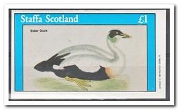 Staffa 1982, Postfris MNH, Birds, Ducks - Regionale Postdiensten