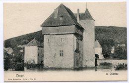 CPA - Carte Postale - Belgique - Crupet - Le Château (M8285) - Assesse