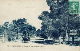 Pornichet (191), Entrée Du Bois D'Amour, Jolie Carte - Pornichet