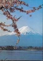 JAPAN - MONTE FUJI VISTO DA LAKE KAWAGUCHI - NUOVA - Giappone