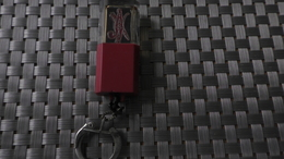 PORTE CLEF CAROTTE TABAC - Autres Collections