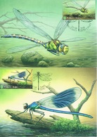 Belgique - Insectes : Libellules CM 4793/4797 - Maximum Cards