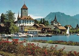 SPIEZ (chloé6) - Suisse