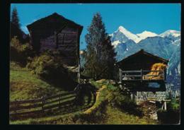 Stadel Und Spycher Bei Grächen [AA41-6.321 - Suisse