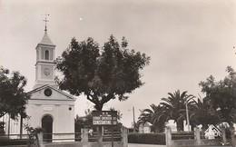 Rare Cpa El Arrouch L'église Et Le Square - Altre Città