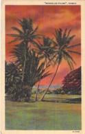 "USA Etats Unis ( HI HAWAÏ ) "" MOANALUA PALMS "" - CPSM PF 1956 - PALMIERS Palm Trees Palmen Palme Palmeras Palmbomen - Etats-Unis"