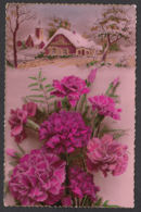 93215/ FLEURS, Oeillets Sur Fond De Paysage D'hiver - Flowers