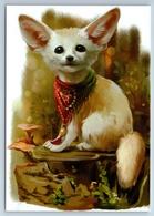 CUTE Fennec FOX In Bandana Mushrooms New Unposted Postcard - Animaux & Faune