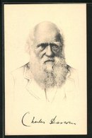 AK Naturforscher Charles Darwin, Portrait Mit Bart - Persönlichkeiten