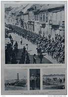 Les Opérations Victorieuses De L'armée Serbe - Entrée De L'armée Serbe à Semlin - Page Original  1914 - Historical Documents