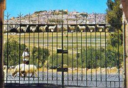1 AK Palästina – Palestine * Bethlehem Und Im Vordergrund Das Feld Der Hirten * - Palästina
