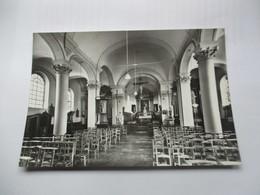 CP Maubray Eglise St Amand Vue Intérieure - Belgique