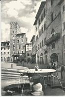 AREZZO PIAZZA VASARI  -FG - Arezzo