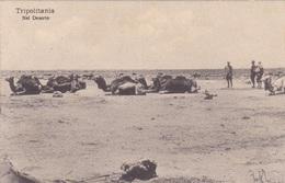TRIPOLITANIA NEL DESERTO  VG AUTENTICA 100% - Eritrea