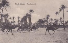 TRIPOLI ITALIANA VIALE HAMAMJE   VG AUTENTICA 100% - Eritrea