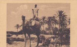 TRIPOLITANIA NELL'OASI   AUTENTICA 100% - Eritrea