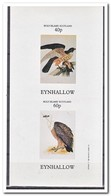Eynhallow 1982, Postfris MNH, Birds Of Prey - Regional Issues