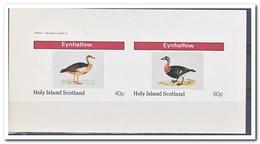 Eynhallow 1982, Postfris MNH, Birds, Ducks - Regionale Postdiensten