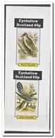 Eynhallow 1981, Postfris MNH, Birds - Regionale Postdiensten