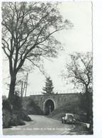 Bovigny Vieux Chêne Et Le Pont Du Chemin De Fer - Gouvy