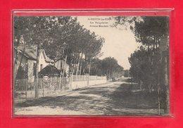 44-CPA SAINT BREVIN LES PINS - Saint-Brevin-les-Pins
