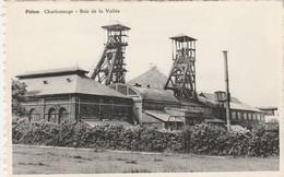 Piéton ,   Charbonnage ;  Bois De La Vallée - Chapelle-lez-Herlaimont