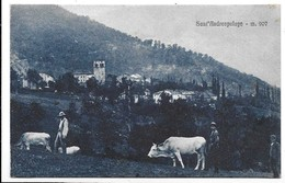 Sant'Andrea Pelago Di Pievepelago (Modena). Veduta - Mucche Al Pascolo. - Modena