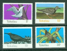 Tokelau Islands: 1977   Birds Of Tokelau      MNH - Tokelau