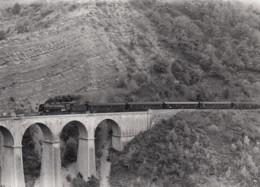 ST MICHEL DES PORTES ISERE  - CHEMIN DE FER GRENOBLE-VEYNES - PHOTO JEAN-LOUIS POGGI  -  SPECIALE AMF6 1973 - Railway
