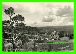 TRONDHEIM, NORVÈGE - SKISTUA - NORMANN - - Norvège