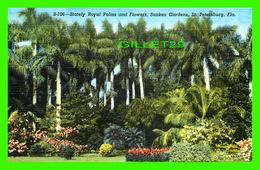 ST PETERSBURG, FL - STATELY ROYAL PALMS & FLOWERS, SUNKEN GARDENS - SUN NEWS CO - - St Petersburg