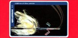 VIACARD - Serie Servizi - 3.000 Km Di Fibre Ottiche - Tessera N. 306 - 20.000 - Pub - Italië