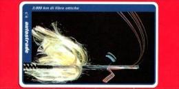 VIACARD - Serie Servizi - 3.000 Km Di Fibre Ottiche - Tessera N. 307 - 100.000 - Pub - Italië