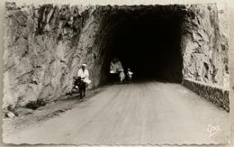 Cpsm Algerie GORGES DE PALESTRO Entrée Du Tunnel - Algérie