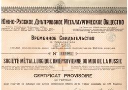 Action Russe - Société Métallurgique Dniéprovienne Du Midi De La Russie - Titre De 1920 - Russie