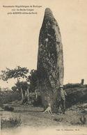 Megalithe à La Roche Longue Menhir Près Quintin - Dolmen & Menhirs