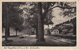 Bad Rippoldsau ,Gasthof Und Pension Kranz - Bad Rippoldsau - Schapbach